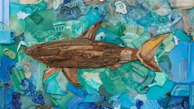 Paul&Shark @Harry Rosen, Toronto